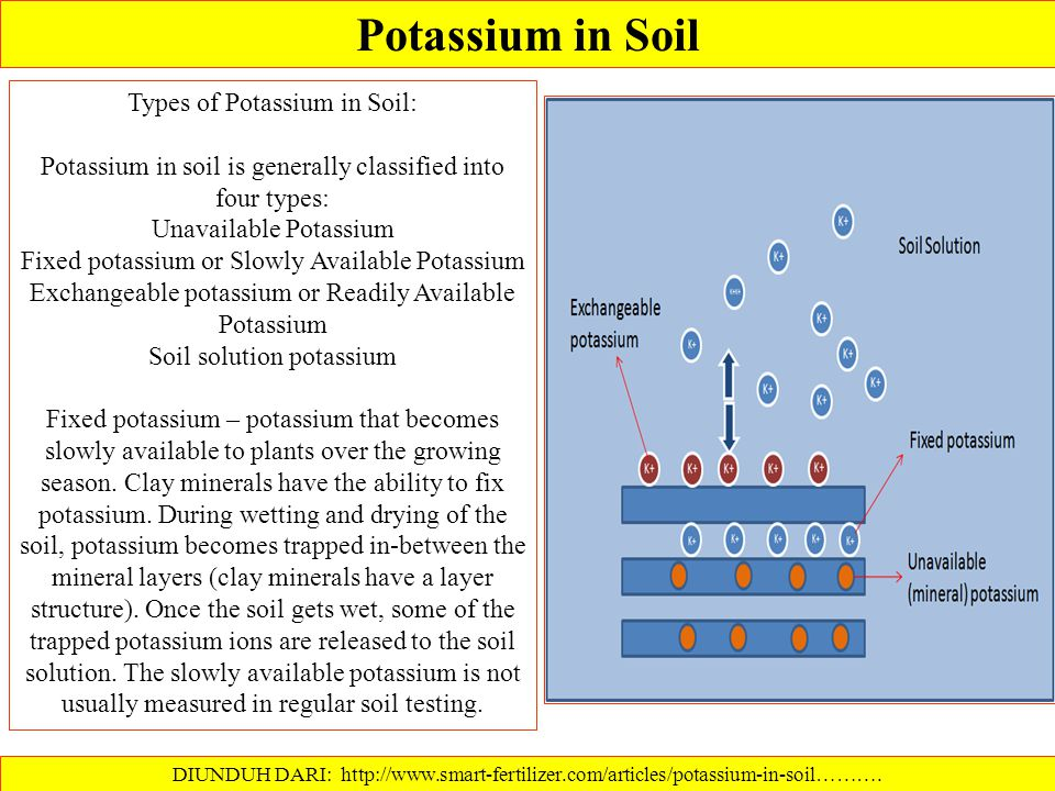 Potassium in Soil Types of Potassium in Soil: