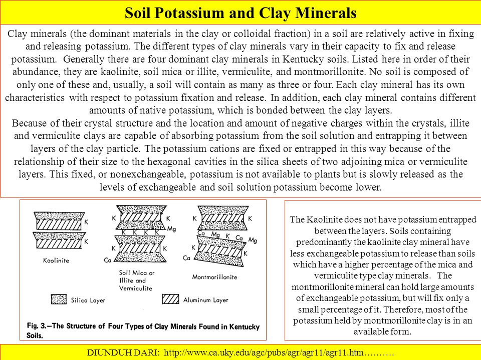 Soil Potassium and Clay Minerals
