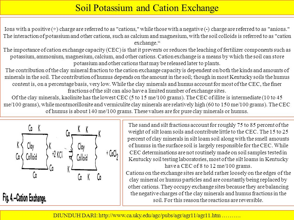 Soil Potassium and Cation Exchange