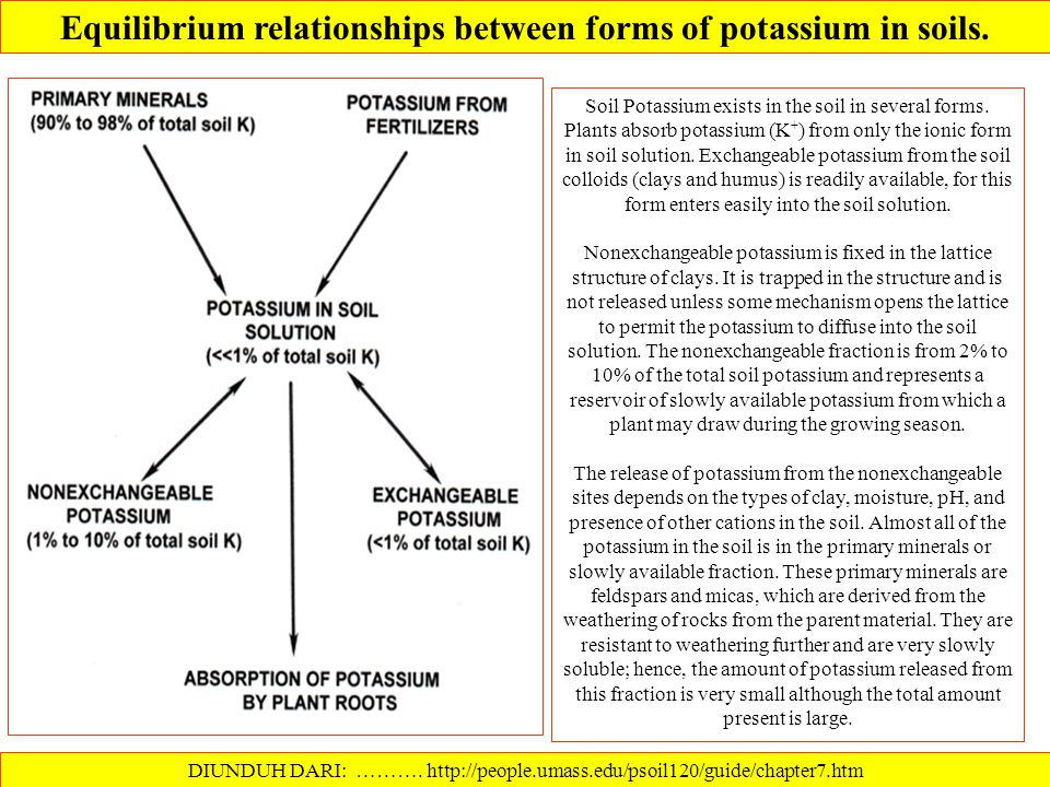 Equilibrium relationships between forms of potassium in soils.