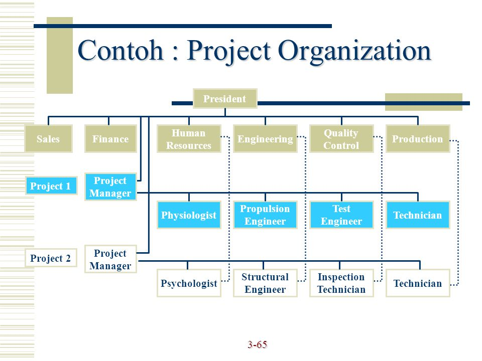 Contoh : Project Organization