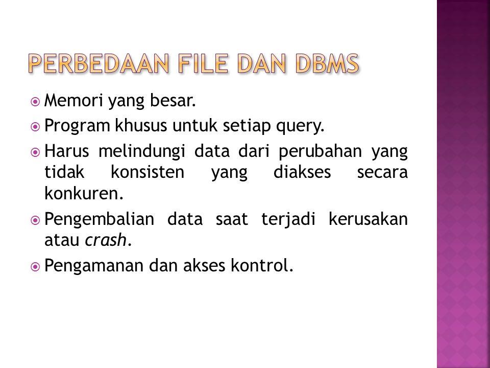 Perbedaan file dan dbms
