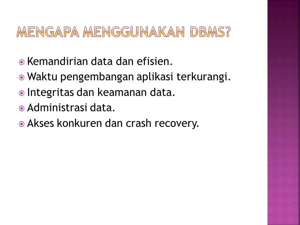 Mengapa menggunakan DBMS