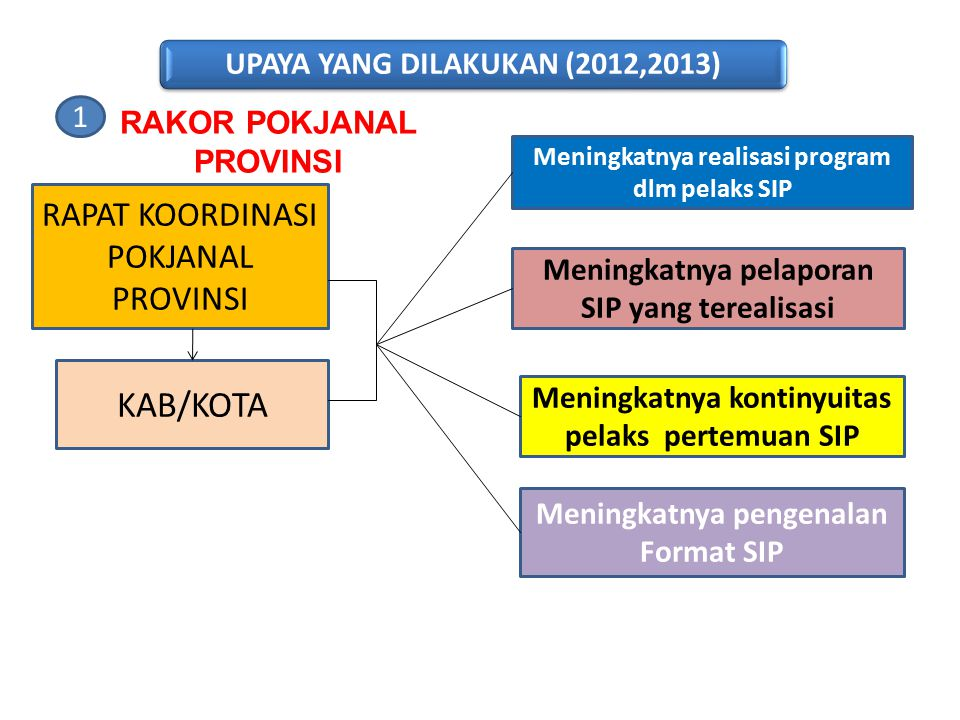 UPAYA YANG DILAKUKAN (2012,2013)