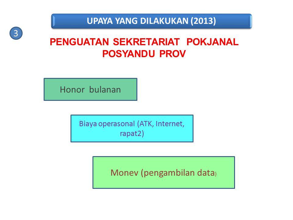 UPAYA YANG DILAKUKAN (2013)