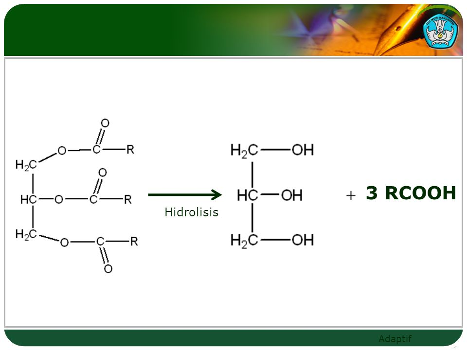 3 RCOOH Hidrolisis