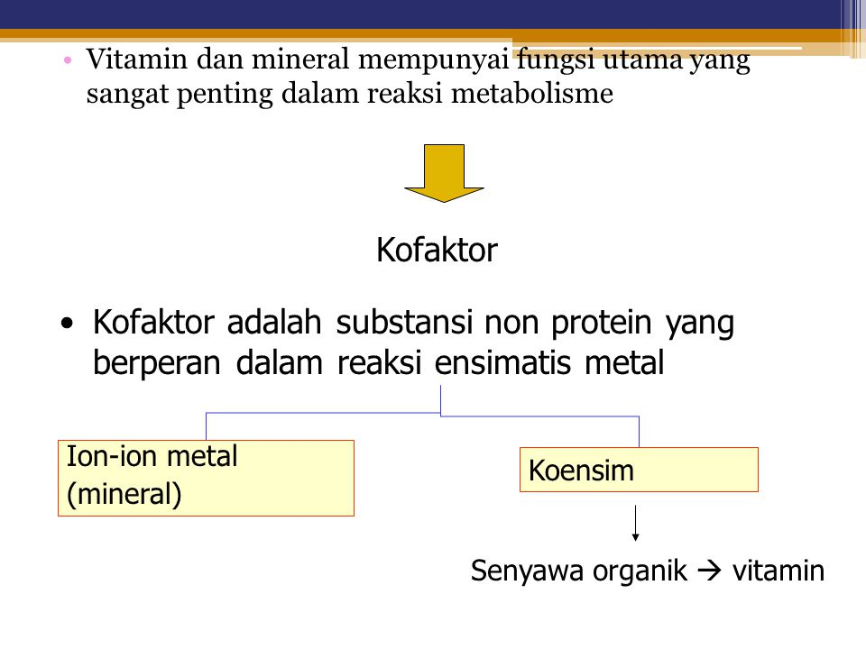 Vitamin dan mineral mempunyai fungsi utama yang sangat penting dalam reaksi metabolisme