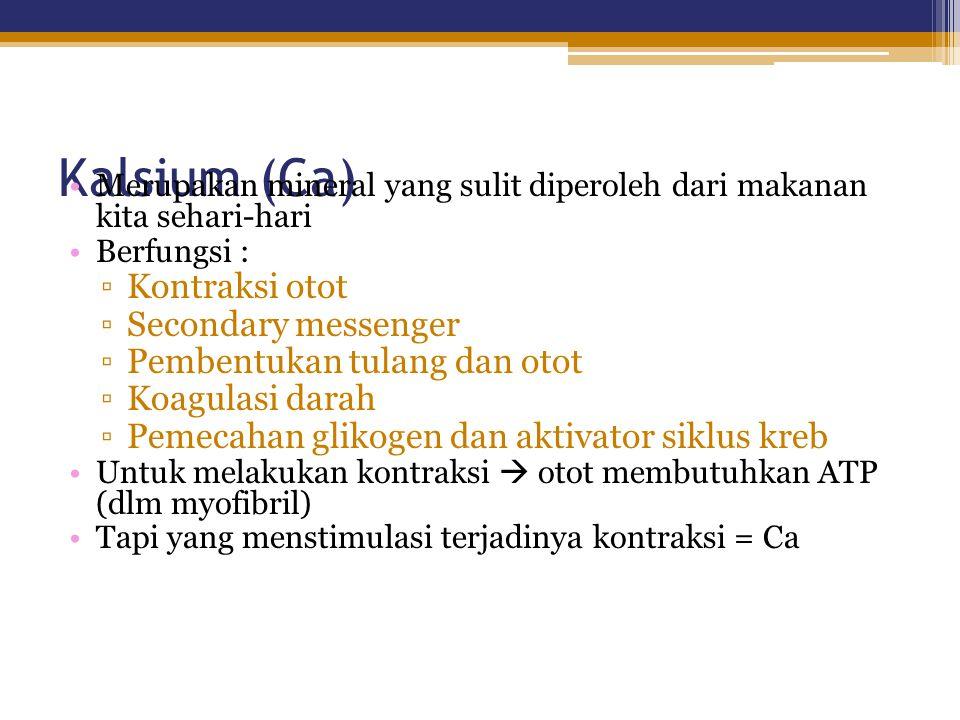 Kalsium (Ca) Kontraksi otot Secondary messenger