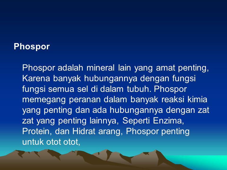 Phospor Phospor adalah mineral lain yang amat penting, Karena banyak hubungannya dengan fungsi fungsi semua sel di dalam tubuh.