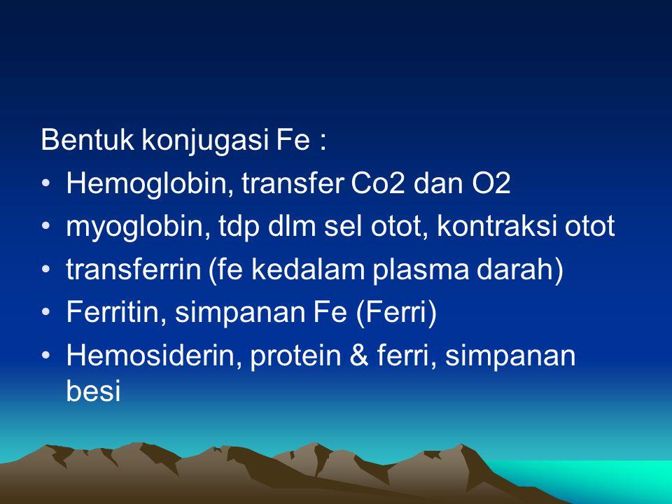Bentuk konjugasi Fe : Hemoglobin, transfer Co2 dan O2. myoglobin, tdp dlm sel otot, kontraksi otot.