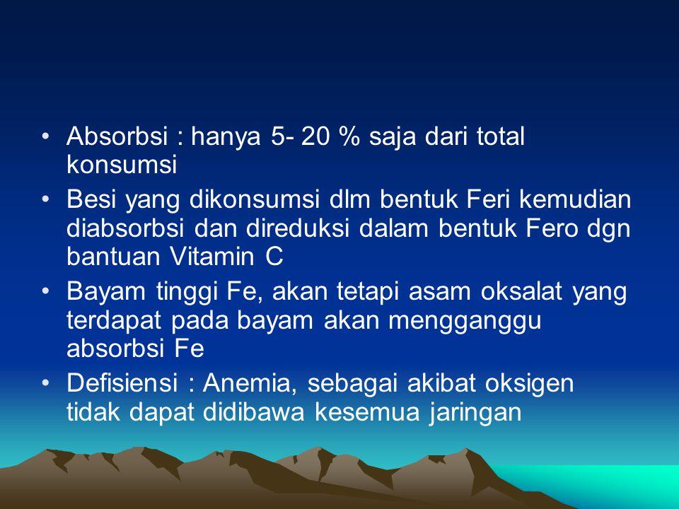 Absorbsi : hanya 5- 20 % saja dari total konsumsi