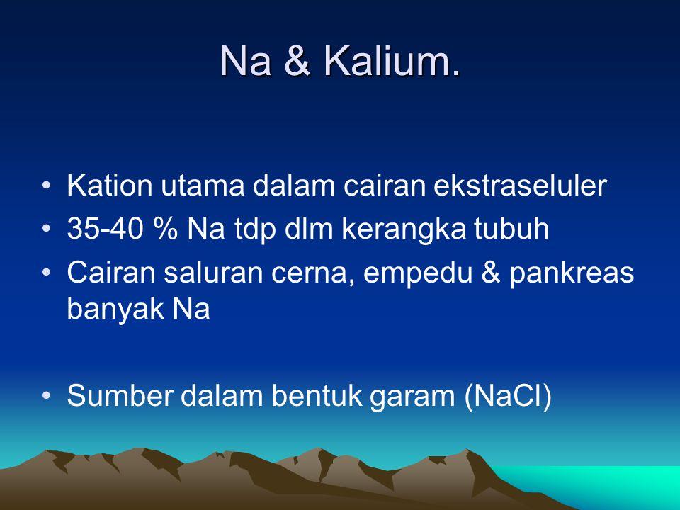 Na & Kalium. Kation utama dalam cairan ekstraseluler
