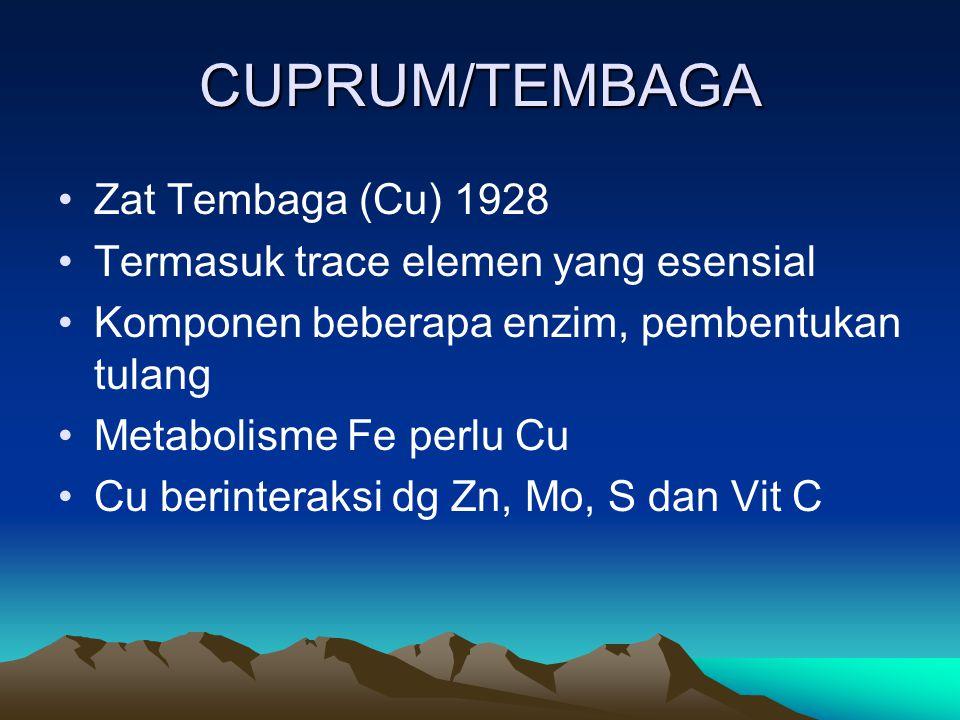 CUPRUM/TEMBAGA Zat Tembaga (Cu) 1928