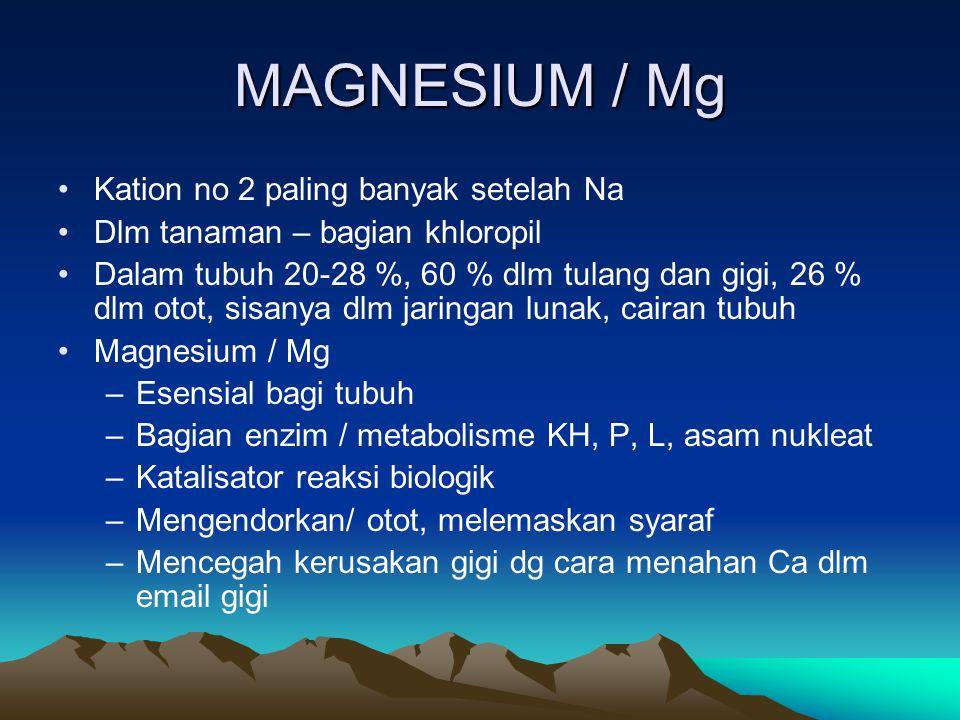 MAGNESIUM / Mg Kation no 2 paling banyak setelah Na