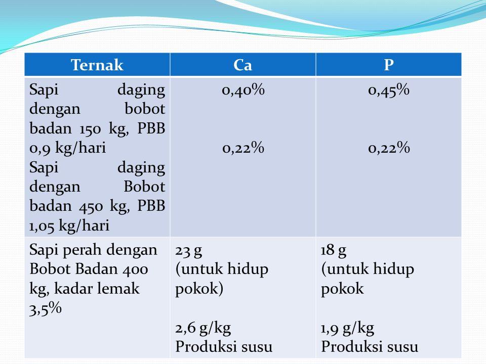 Ternak Ca. P. Sapi daging dengan bobot badan 150 kg, PBB 0,9 kg/hari. Sapi daging dengan Bobot badan 450 kg, PBB 1,05 kg/hari.