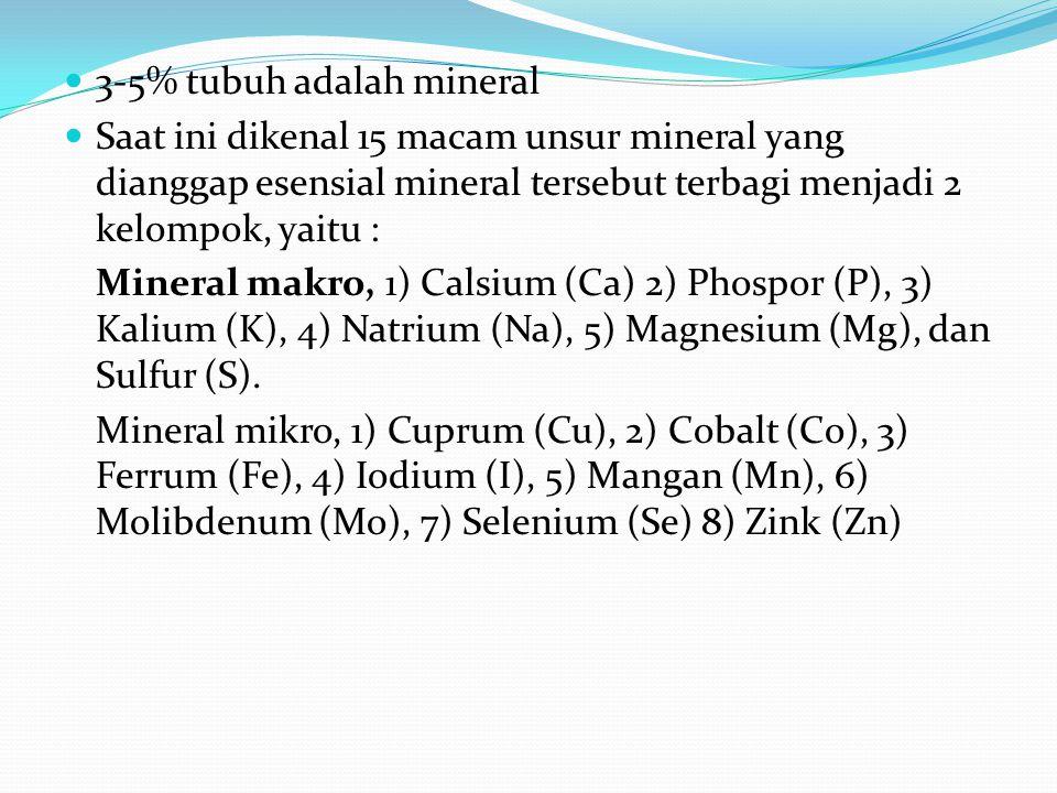 3-5% tubuh adalah mineral