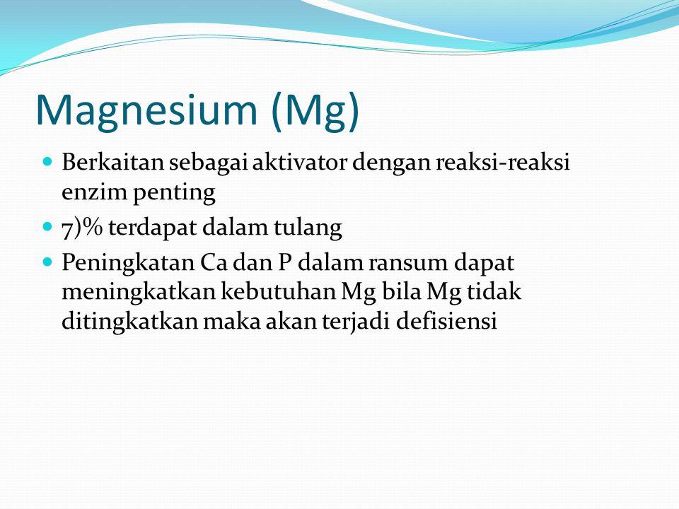 Magnesium (Mg) Berkaitan sebagai aktivator dengan reaksi-reaksi enzim penting. 7)% terdapat dalam tulang.