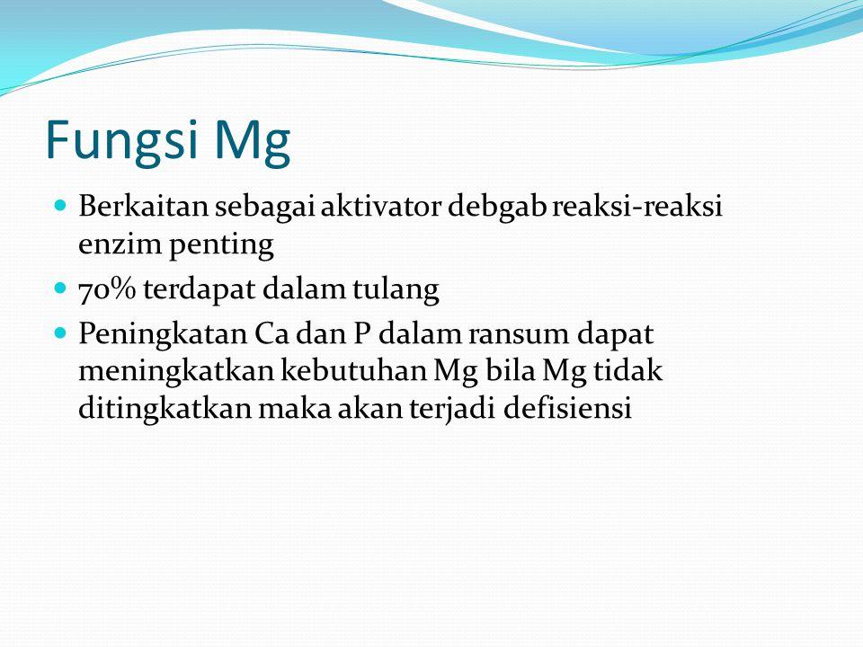 Fungsi Mg Berkaitan sebagai aktivator debgab reaksi-reaksi enzim penting. 70% terdapat dalam tulang.