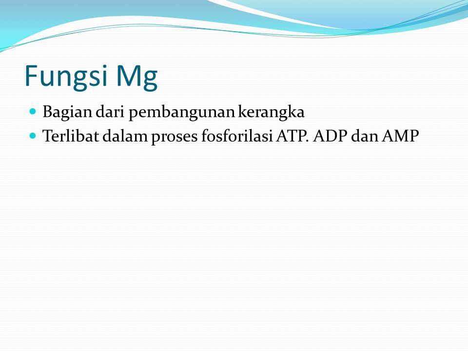 Fungsi Mg Bagian dari pembangunan kerangka