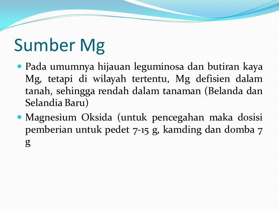 Sumber Mg