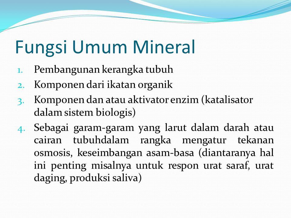 Fungsi Umum Mineral Pembangunan kerangka tubuh