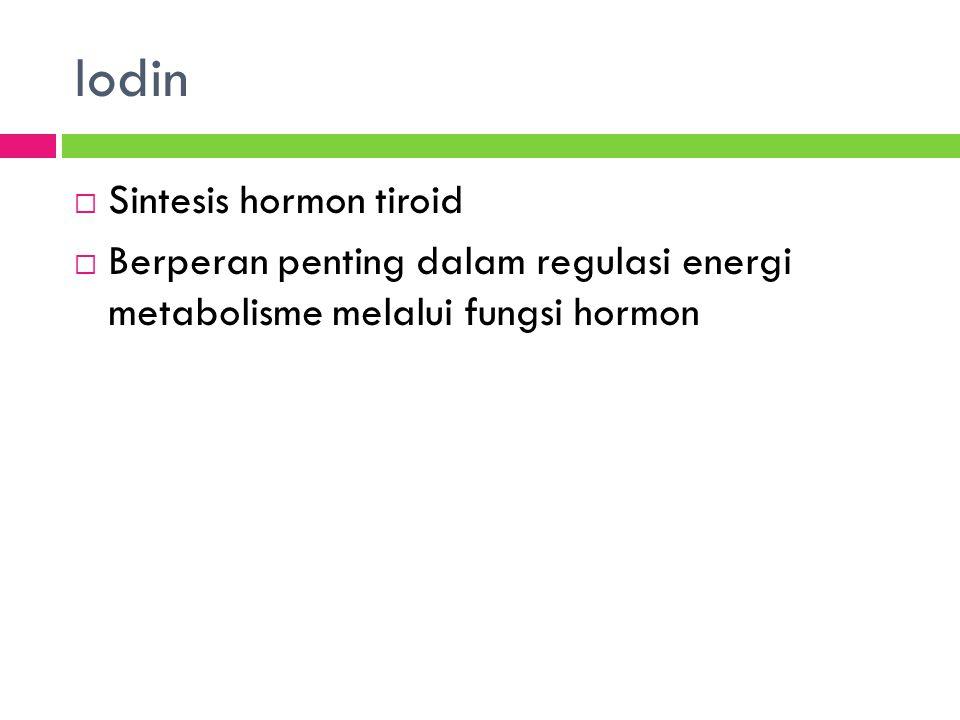 Iodin Sintesis hormon tiroid