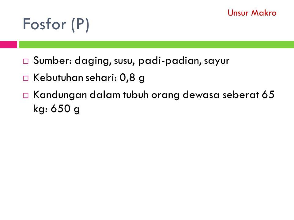 Fosfor (P) Sumber: daging, susu, padi-padian, sayur