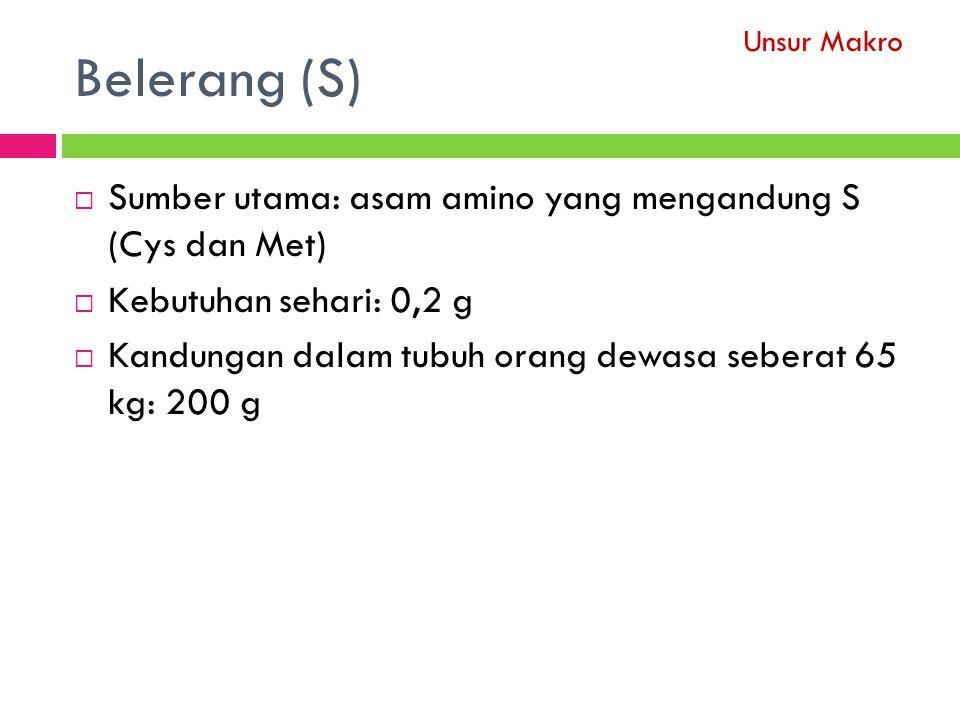 Belerang (S) Sumber utama: asam amino yang mengandung S (Cys dan Met)