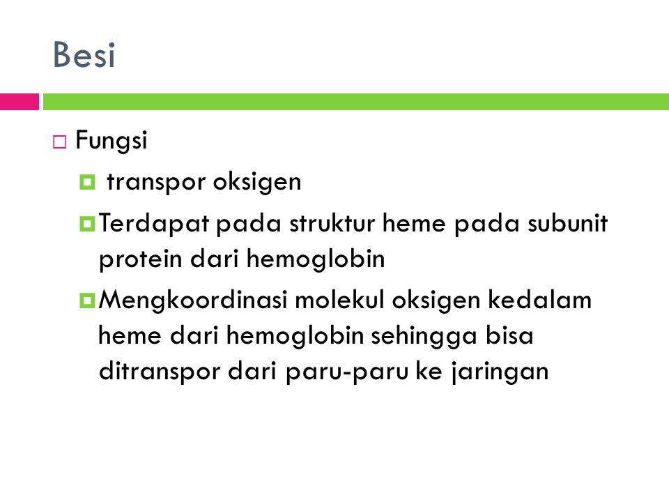 Besi Fungsi transpor oksigen
