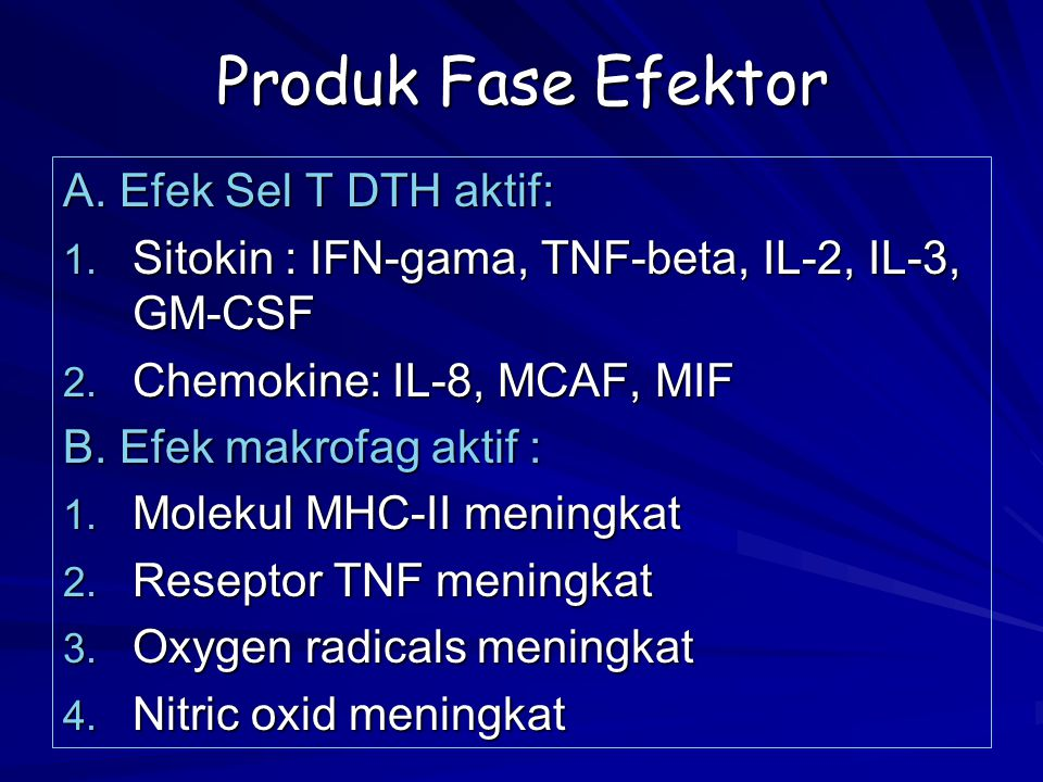 Produk Fase Efektor A. Efek Sel T DTH aktif: