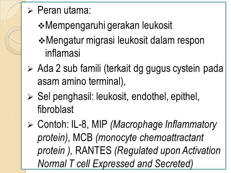 Peran utama: Mempengaruhi gerakan leukosit. Mengatur migrasi leukosit dalam respon inflamasi.