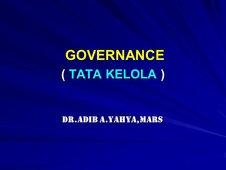 GOVERNANCE ( TATA KELOLA )