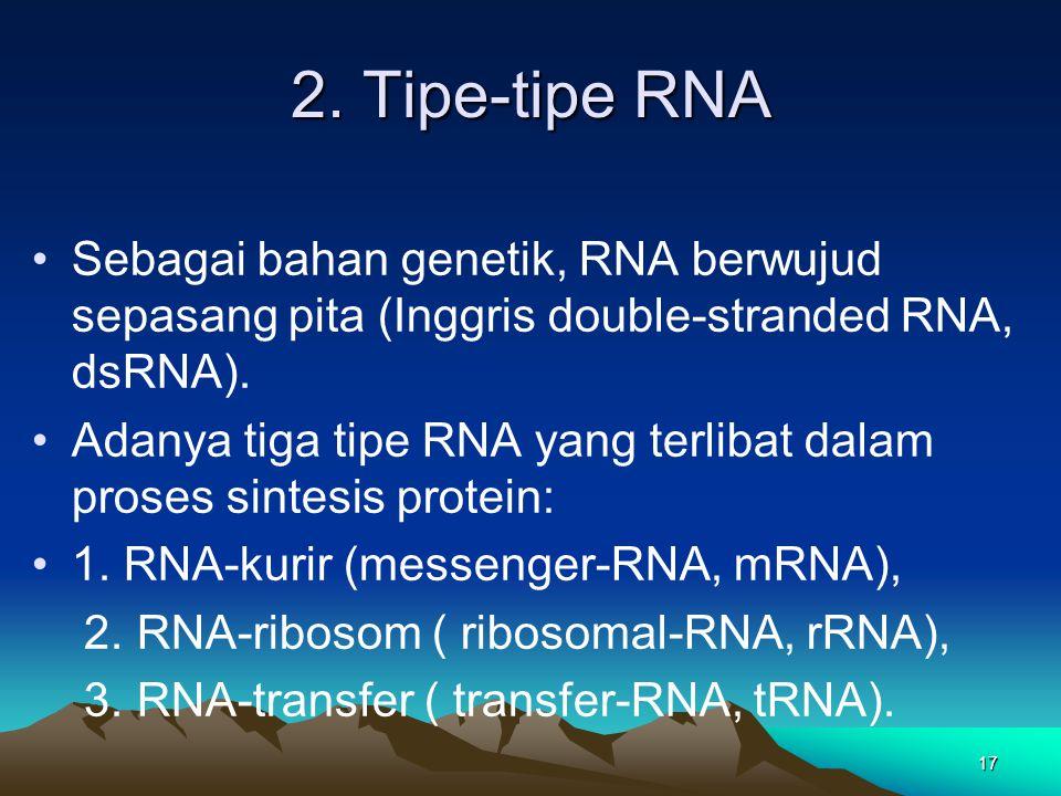2. Tipe-tipe RNA Sebagai bahan genetik, RNA berwujud sepasang pita (Inggris double-stranded RNA, dsRNA).