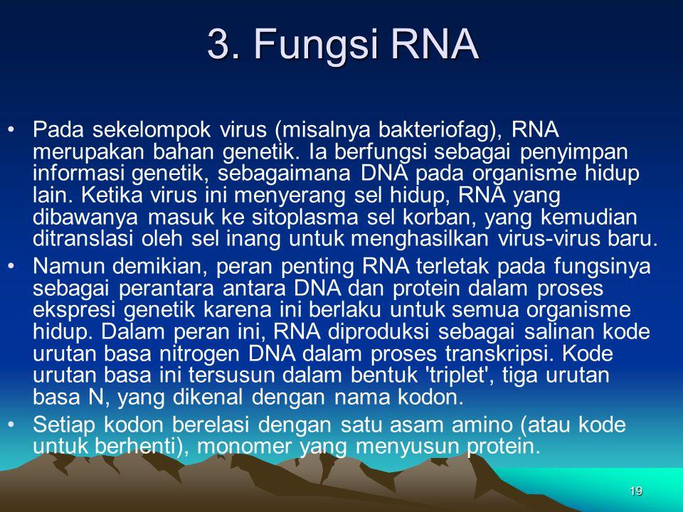 3. Fungsi RNA