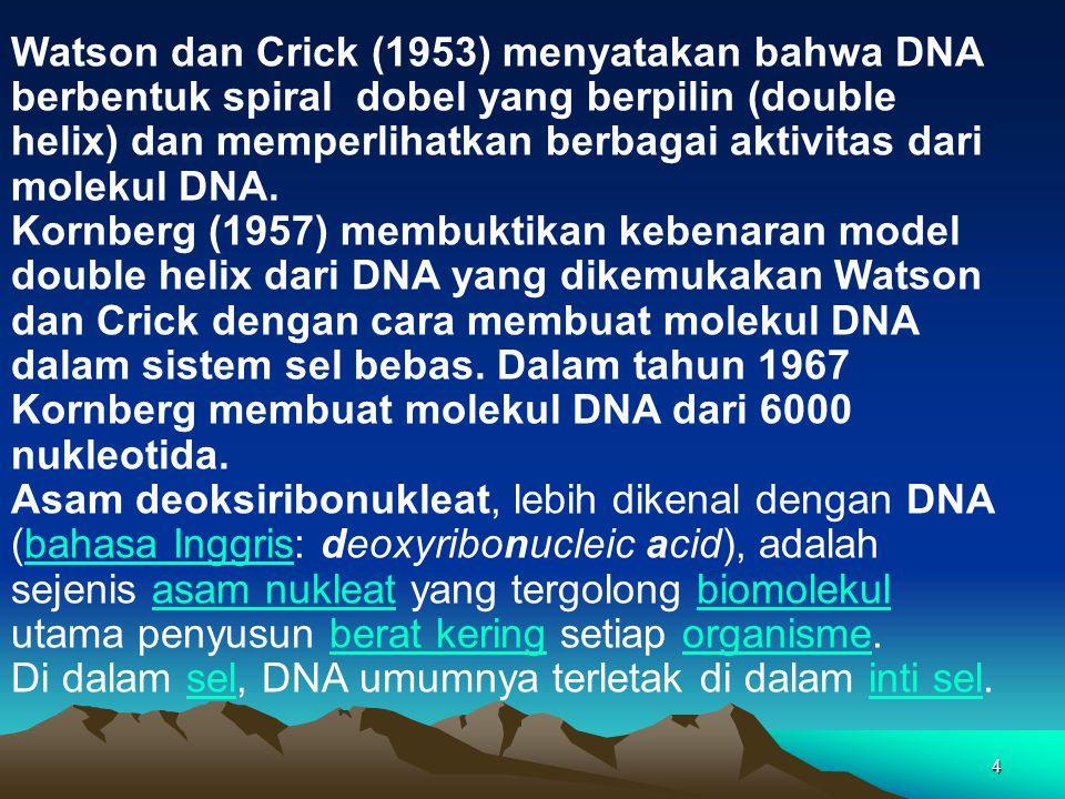 Watson dan Crick (1953) menyatakan bahwa DNA berbentuk spiral dobel yang berpilin (double helix) dan memperlihatkan berbagai aktivitas dari molekul DNA.