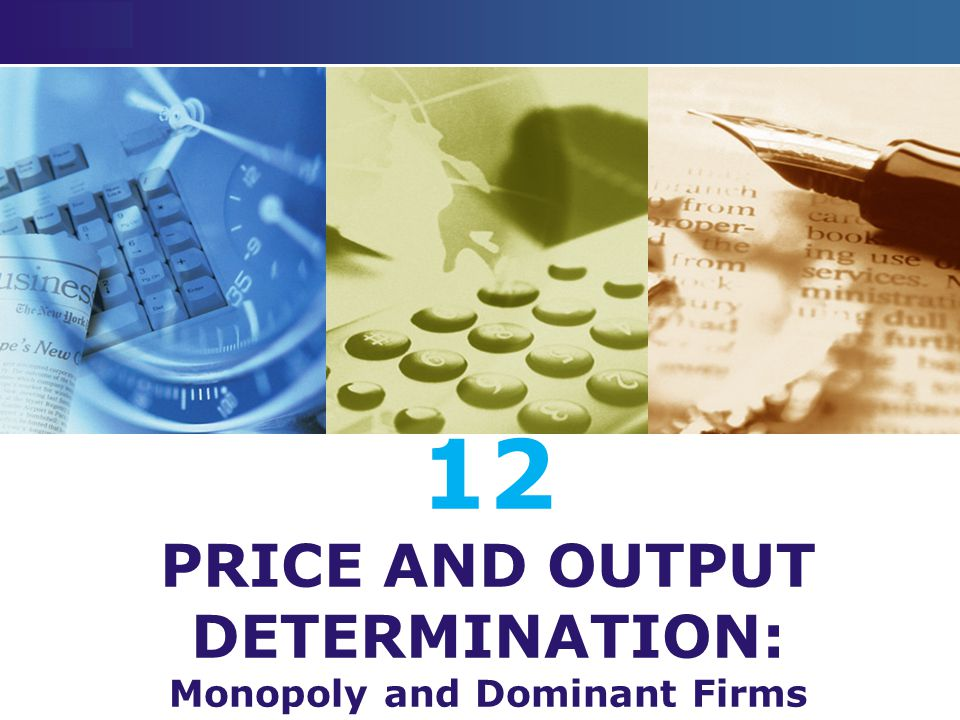 12 PRICE AND OUTPUT DETERMINATION: Monopoly and Dominant Firms