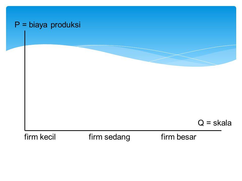 P = biaya produksi Q = skala firm kecil firm sedang firm besar