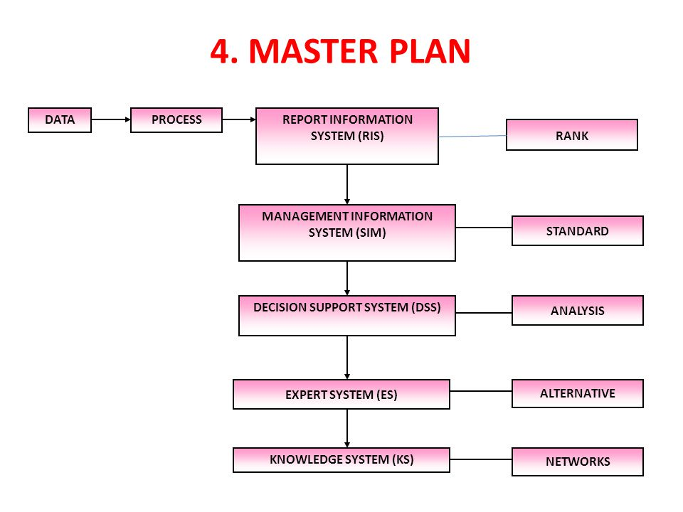 4. MASTER PLAN DATA PROCESS REPORT INFORMATION SYSTEM (RIS) RANK