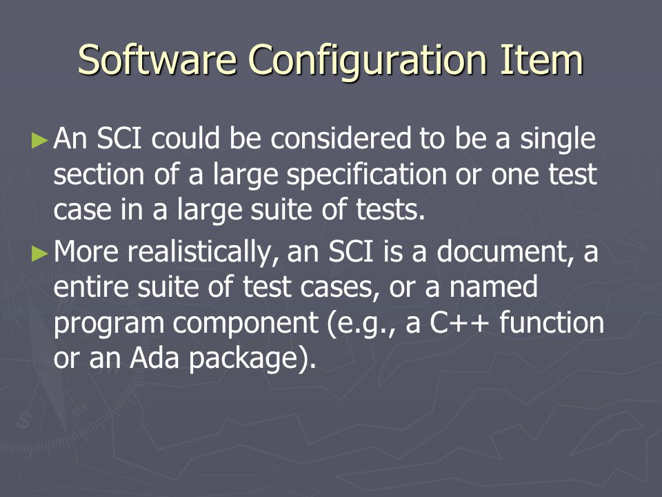Software Configuration Item