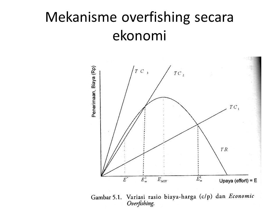 Mekanisme overfishing secara ekonomi