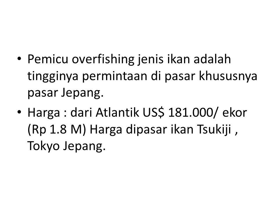 Pemicu overfishing jenis ikan adalah tingginya permintaan di pasar khususnya pasar Jepang.