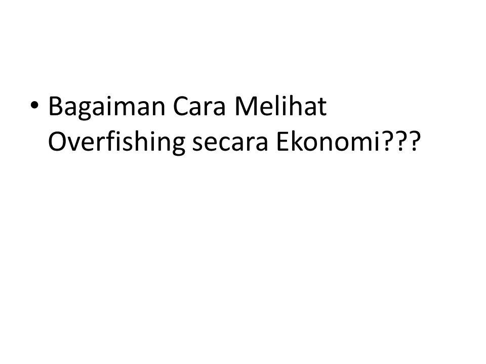 Bagaiman Cara Melihat Overfishing secara Ekonomi