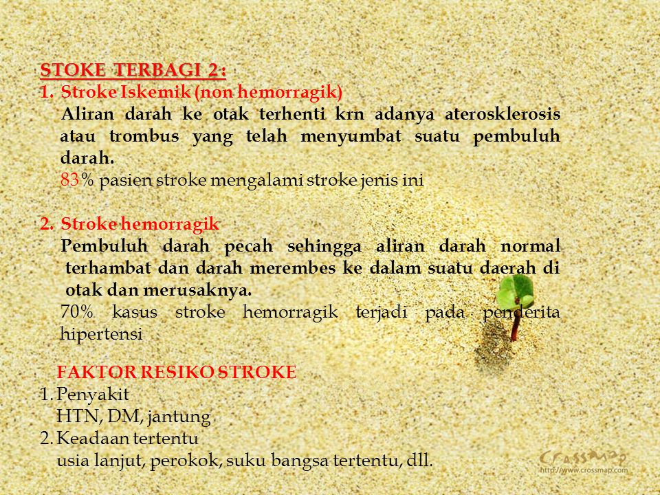 STOKE TERBAGI 2 : Stroke Iskemik (non hemorragik)