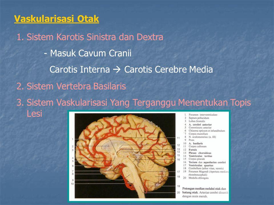 Vaskularisasi Otak Sistem Karotis Sinistra dan Dextra. - Masuk Cavum Cranii. Carotis Interna  Carotis Cerebre Media.