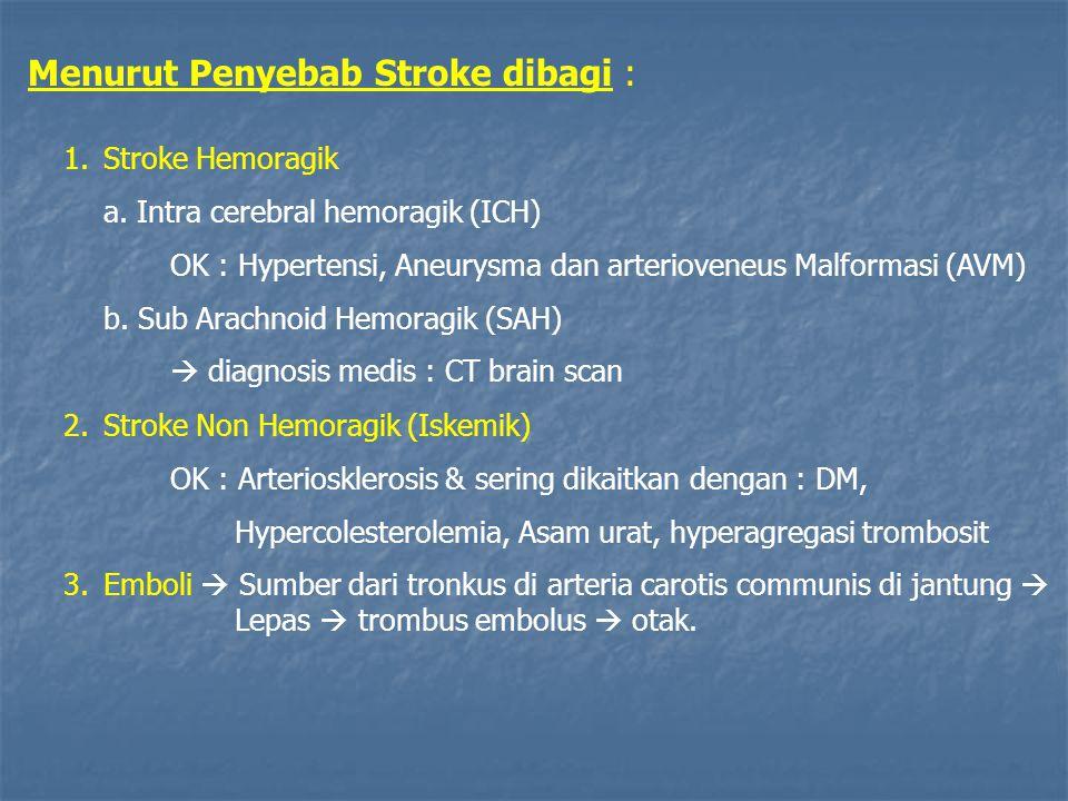 Menurut Penyebab Stroke dibagi :