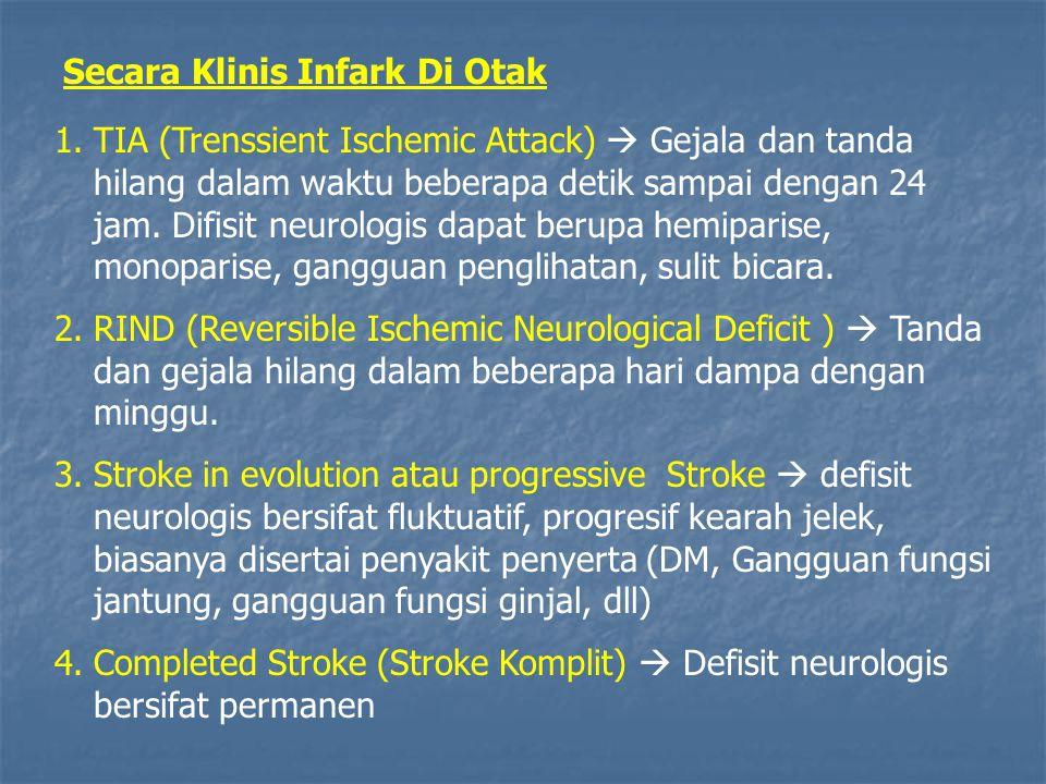 Secara Klinis Infark Di Otak
