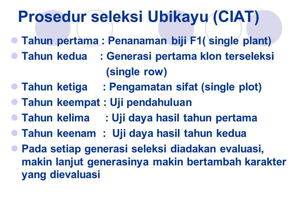 Prosedur seleksi Ubikayu (CIAT)