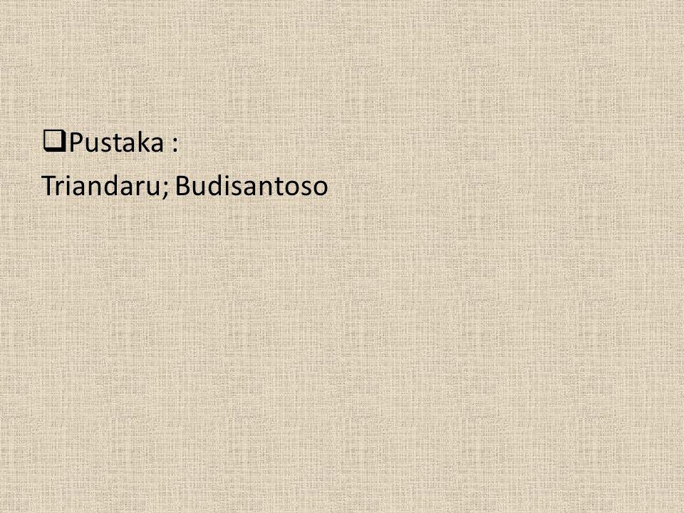 Pustaka : Triandaru; Budisantoso