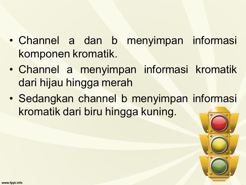 Channel a dan b menyimpan informasi komponen kromatik.