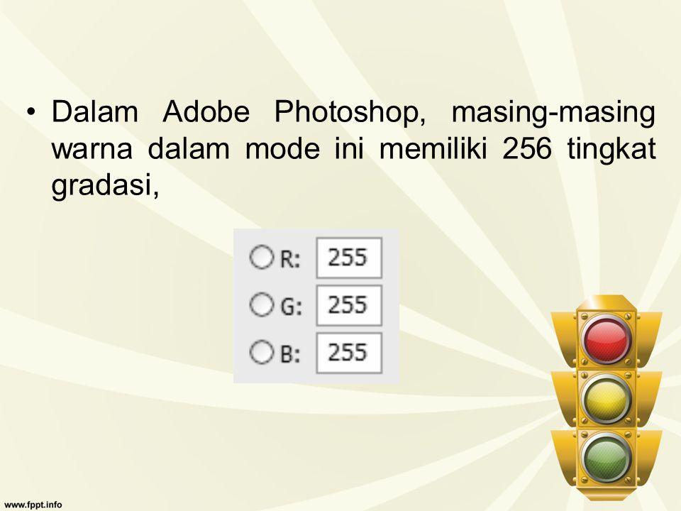 Dalam Adobe Photoshop, masing-masing warna dalam mode ini memiliki 256 tingkat gradasi,